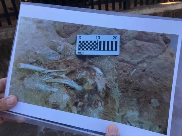 Materiais foram localizados em Presidente Prudente — Foto: Stephanie Fonseca/G1