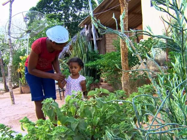 Família de comunidade no Jalapão possui uma verdadeira farmácia no quintal  (Foto: TV Globo)