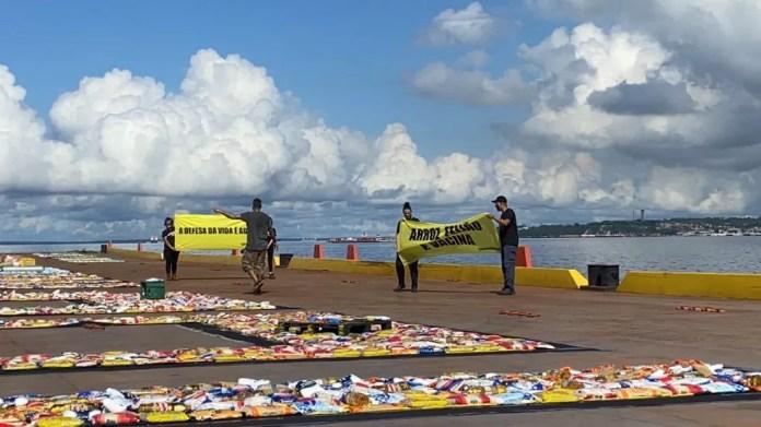 Greenpeace protesta contra atuação do Governo na pandemia — Foto: Patrick Marques/G1