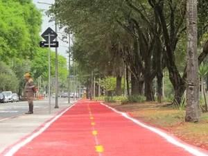 Uma ciclovia/rota que liga o portão principal da Universidade de São Paulo (USP) e a estação Butantã, do Metrô, na Zona Oeste da capital, deve entrar em operação na quinta-feira (22), Dia Mundial Sem Carro. O trajeto tem extensão de 840 metros. De acordo  (Foto: Letícia Macedo/ G1)