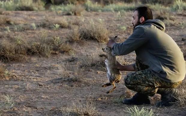 Funcionário de parque nacional segura coelho antes de soltá-lo para que guepardo asiático caçe a sua presa (Foto: Vahid Salemi/AP)