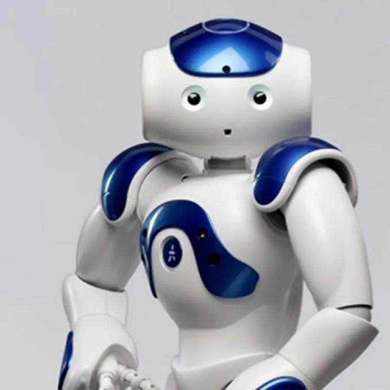 Robô Zora (Foto: Divulgação)