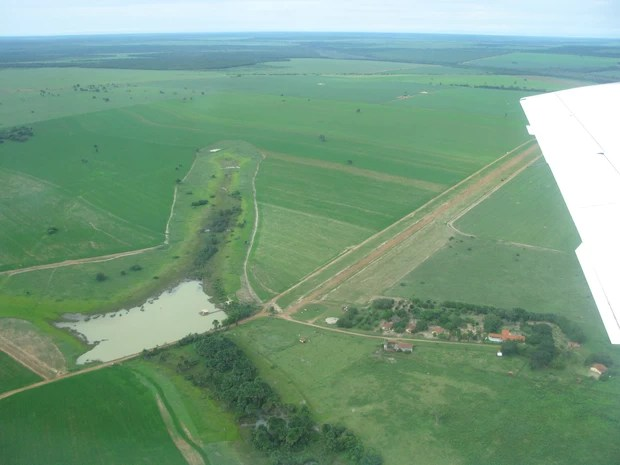Imagem de sobrevoo realizado por comissão do Mapa em plantações deixadas na reserva indígena (Foto: Wanderlei Dias Guerra / Mapa)