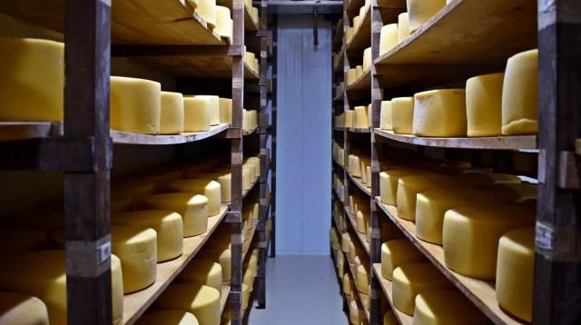 Consumo brasileiro é de cerca de 5,5 kg de queijo por habitante no ano — Foto: Fernanda Rodrigues/G1