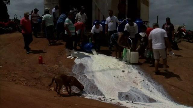 Sem ter como escoar a produção, produtores jogam leite fora em Mar Vermelho, Alagoas — Foto: Reprodução/TV Gazeta
