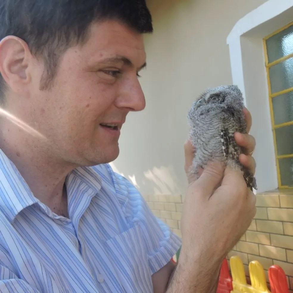Roberto Pellizzer com uma corujinha-do-mato que caiu do ninho feito dentro do complexo São Julião. — Foto: Roberto Pellizzer/Arquivo pessoal