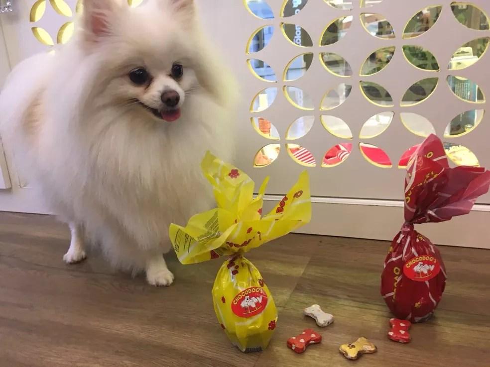 Cachorros também têm petiscos para a Páscoa (Foto: Arquivo pessoal)