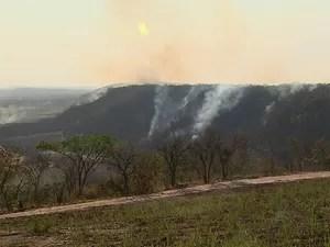 Fogo foi controlado na noite de domingo (14) após uma semana do início do incêndio (Foto: Ronaldo Gomes/EPTV)