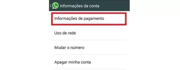 Informações da conta do WhatsApp (Foto: Reprodução/Lívia Dâmaso)