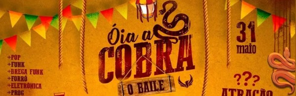 Festa Óia a Cobra — Foto: Divulgação