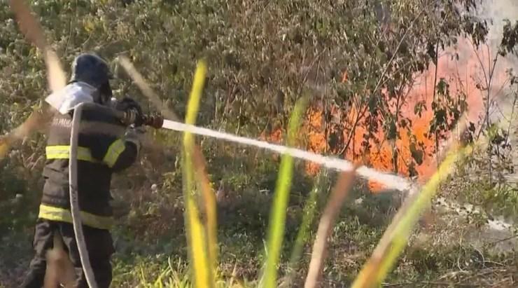 Homens do Corpo de Bombeiros levaram quatro horas no combate às chamas (Foto: Reprodução / TV TEM)