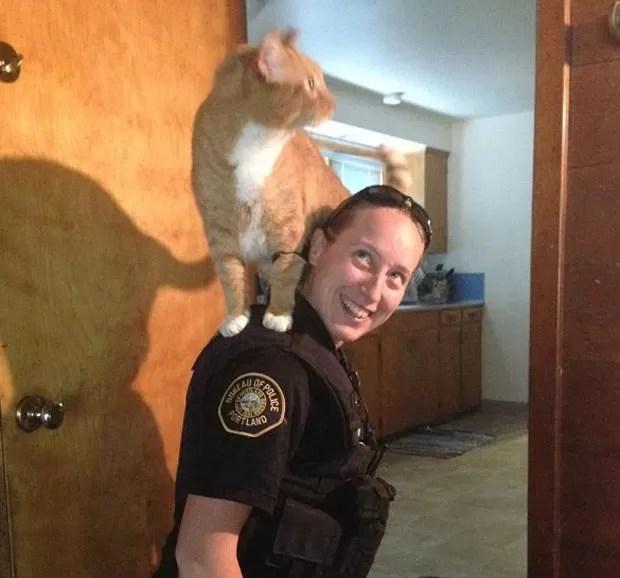 'Gato policial' é fotografado no ombro da oficial Sarah Kerwin durante operação policial em casa em Portland, no Oregon (EUA) (Foto: Portland Police Bureau/AP)