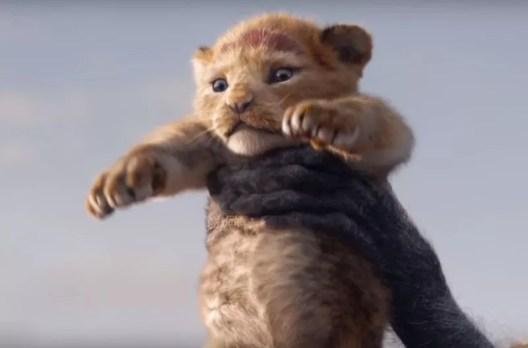 Simba em versão de live-action de 'Rei Leão' (Foto: Divulgação)