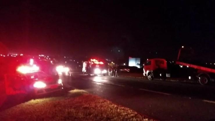 Caminhão bateu em duas vacas soltas na pista em Catanduva (Foto: Arquivo pessoal)