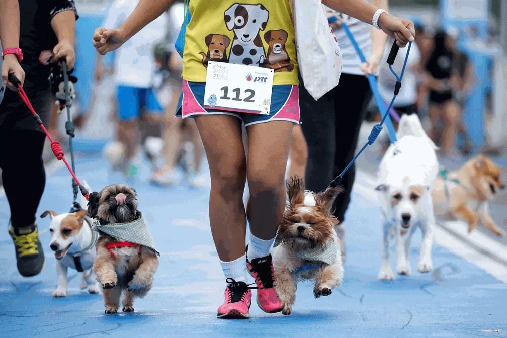 Corrida foi disputada por donos e cães de várias raças e tamanhos (Foto: Jorge Silva/Reuters)