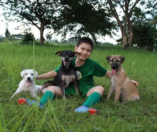Ken conseguiu comprar um terreno para abrigar mais animais (Foto: Divulgação)