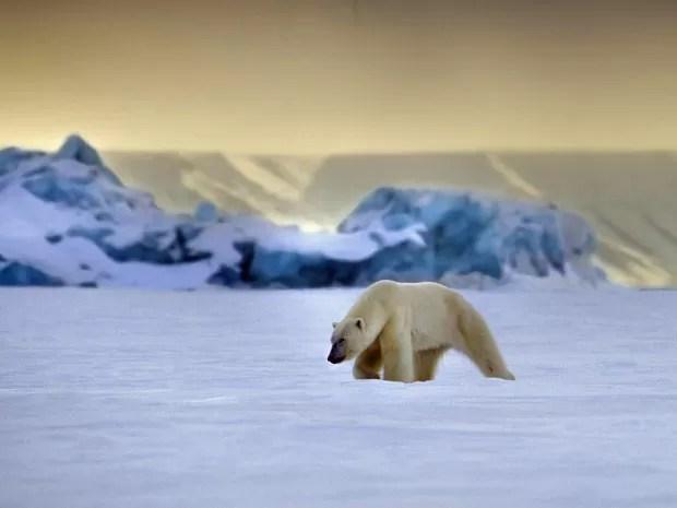 Uma das imagens feitas por Francisco Mattos em suas expedições pela Noruega (Foto: Francisco Mattos)