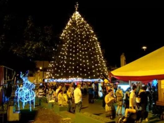 Praça onde o pinheiro fica também recebe decoração natalina (Foto: Thony Guedes/ Prefeitura Tatuí)