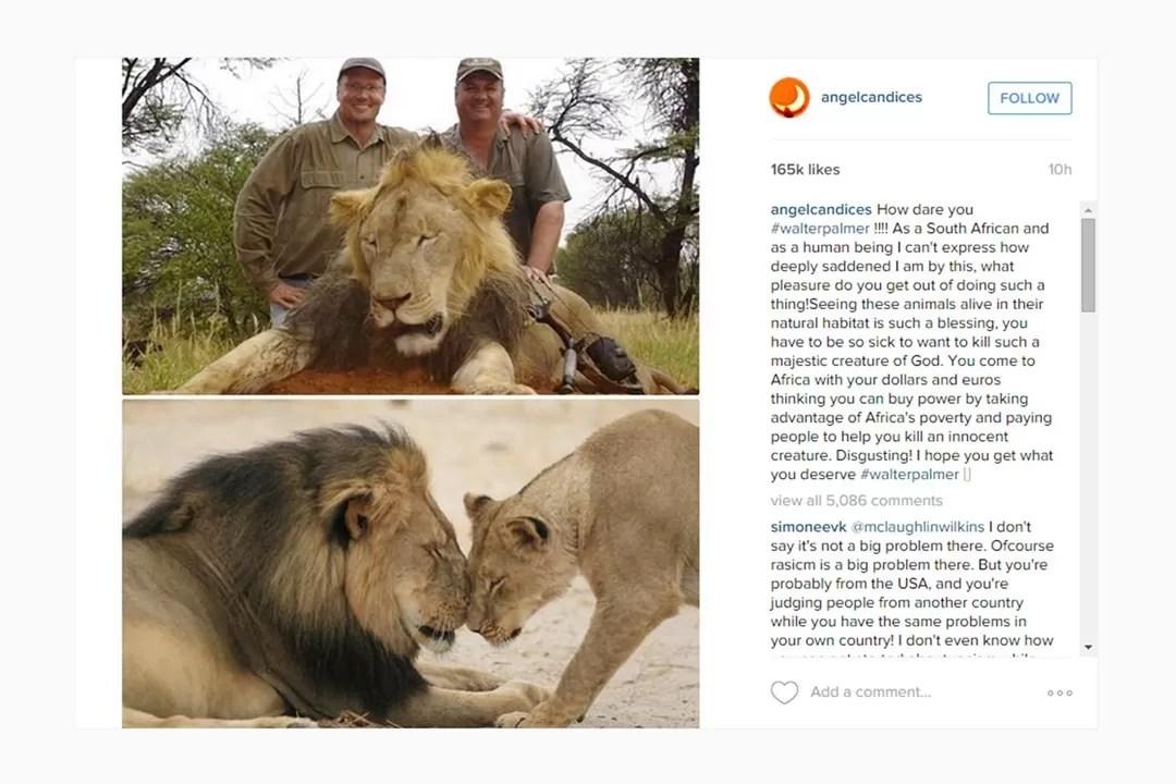 O outro post de Candice Swanepoel nas redes sociais, contra o dentista norte-americano (Foto: Reprodução/Instagram)