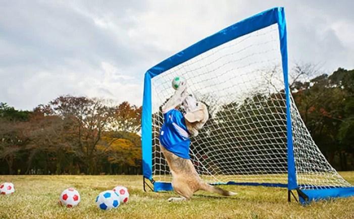 Em 2015, Purin estabeleceu um recorde para o maior número de bolas apanhadas (Foto: Guinness World Records )
