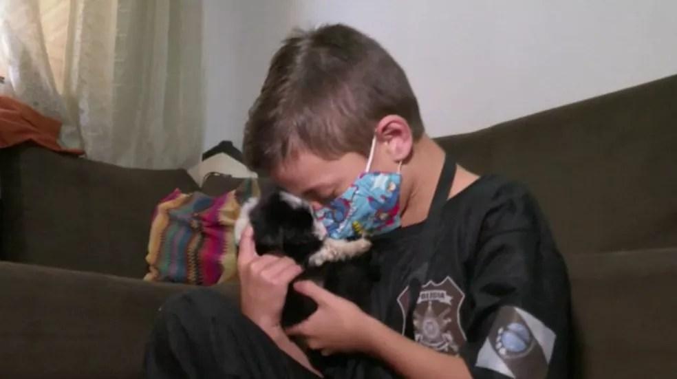 Menino é apaixonado por animais e ajuda a mãe a cuidar de cachorros abandonados, em Cascavel — Foto: Sidney Trindade/RPC