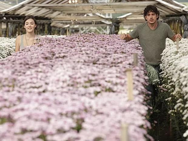Giane é apaixonada por Bento, seu amigo de infância de parceiro de trabalho (Foto: Sangue Bom/TV Globo)