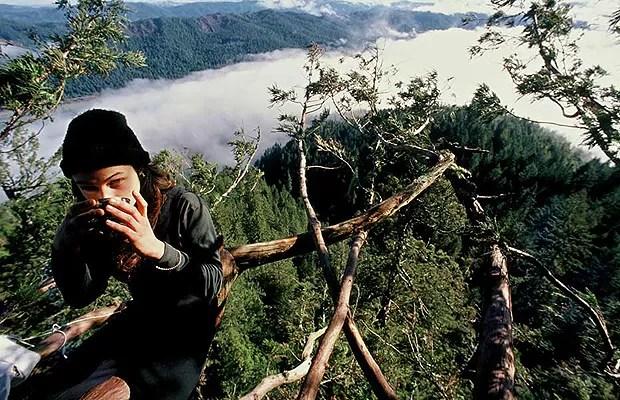 Julia viveu mais de dois anos no topo de uma árvore (Foto: Reprodução/Julia Butterfly Hill)
