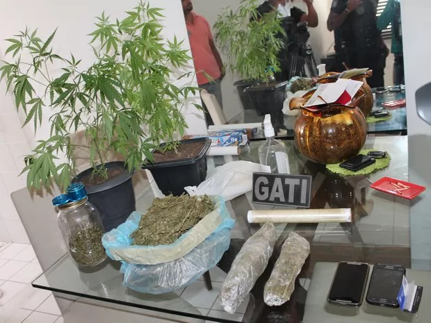 Droga encontrada no apartamento do estudante de engenharia (Foto: Taisa Alencar / G1)
