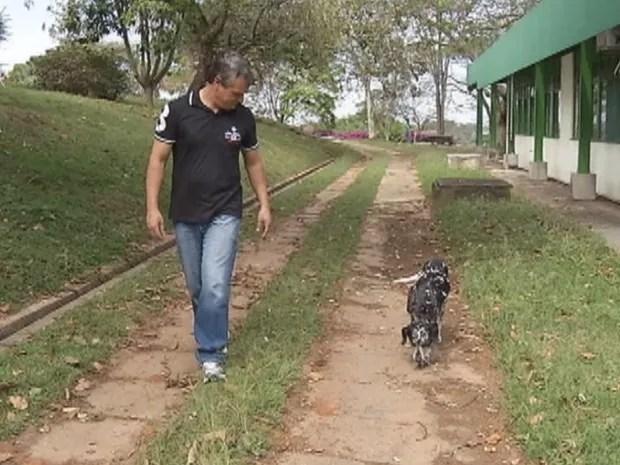 Orivaldo passeia com a cadela Frida, recuperada com as sessões (Foto: Reprodução/TV TEM)