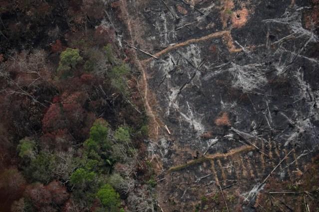Foto aérea mostra uma parcela desmatada da Amazônia perto de Porto Velho. — Foto: Ueslei Marcelino/Reuters