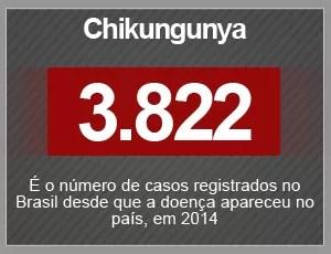 Selo - Chikungunya (Foto: G1)