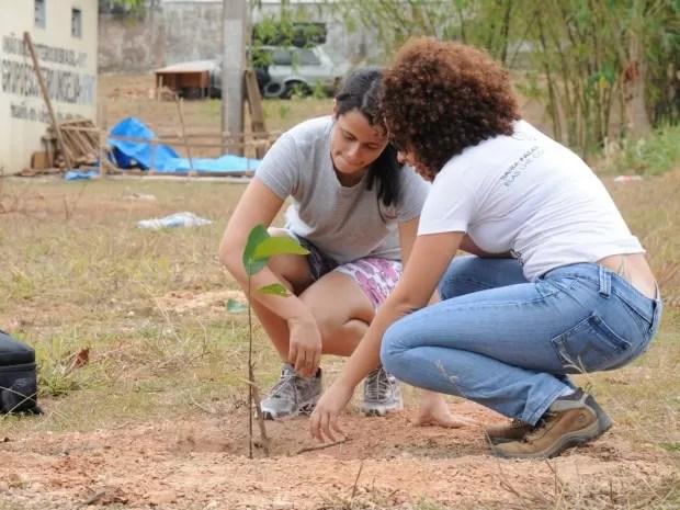 Alunos da UFMT plantam árvores no campus da universidade. (Foto: Luiz Carlos Sayão/ Assessoria-UFMT)