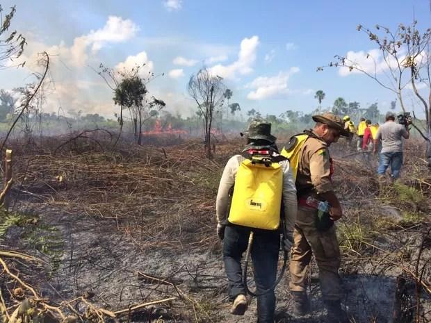 Área onde fogo começou tem ao menos 86 hectares de terras (Foto: Reprodução/Rede Amazônica Acre)