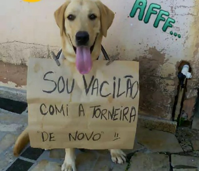 """Fred é tão """"danado"""" que até já usou a plaquinha da vergonha, na Bahia — Foto: Arquivo Pessoal"""