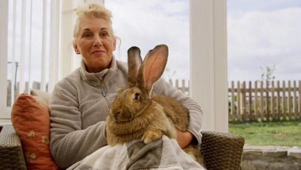 Annette Edwards posa com coelho Dario no colo em foto sem data — Foto: Reprodução/Twitter/maycats56