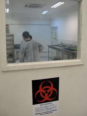 Fábrica em Campinas tem capacidade de produzir 500 mil mosquitos da dengue transgênicos por semana (Foto: Eduardo Carvalho/G1)