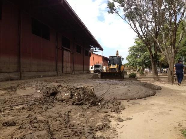 Lama retirada dos galpões da Estrada de Ferro em Porto Velho (Foto: Gaia Quiquiô/G1)