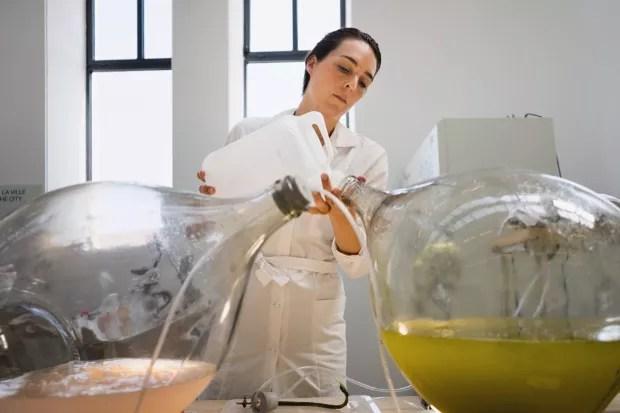 Laboratório. Designers holandeses convertem algas em bioplástico para impressão 3D (Foto: Antoine Raab / Divulgação)