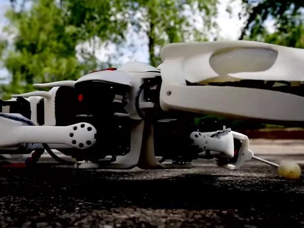 Cientistas criaram robô salamandra, que anda e nada como o anfíbio (Foto: BBC)