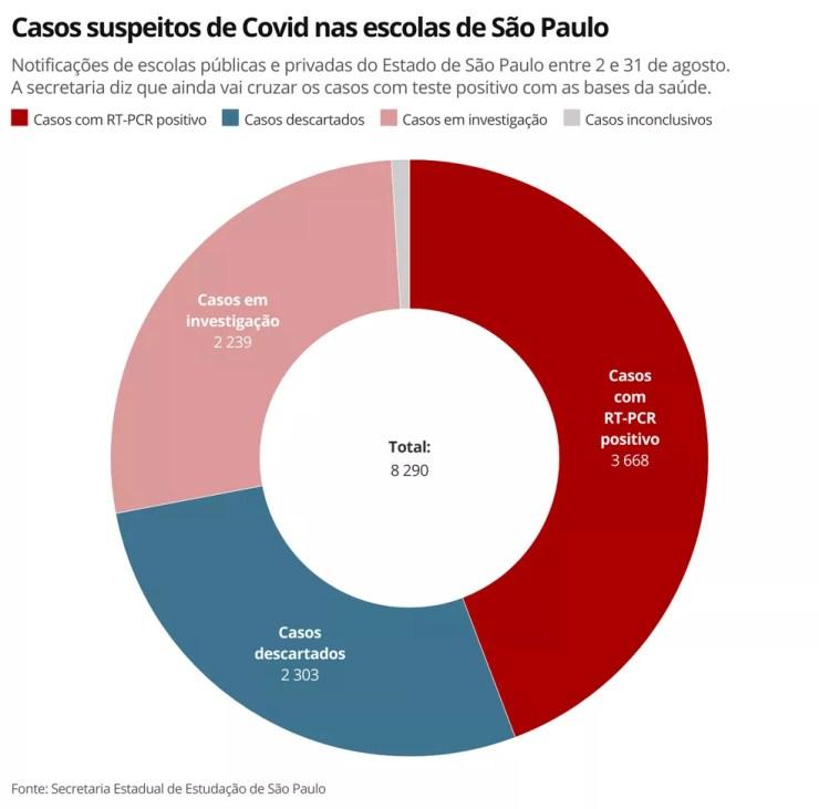Notificações de escolas públicas e privadas do Estado de São Paulo entre 2 e 31 de agosto. A secretaria diz que ainda vai cruzar os casos com teste positivo com as bases da saúde. — Foto: Ana Carolina Moreno/TV Globo