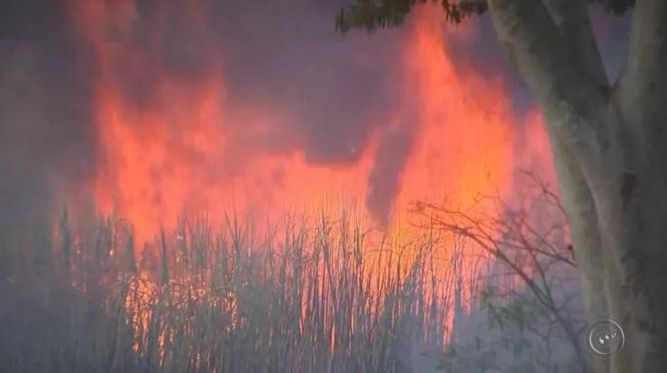 Em alguns momentos, força das chamas impressionou (Foto: Reprodução / TV TEM)
