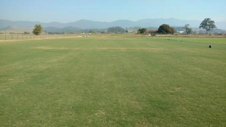 Novo gramado do Morumbi é preparado há dez meses e meio por empresa responsável (Foto: GloboEsporte.com)
