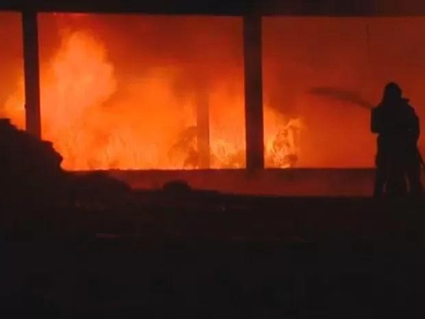 Bombeiros de Santa Bárbara, Americana e Piracicaba trabalharam para conter fogo (Foto: Vaner Santos/EPTV)