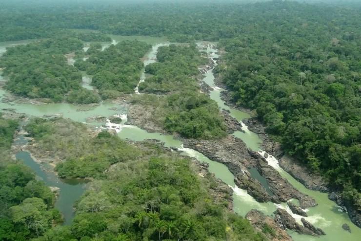 MP previa redução de parte da Floresta Nacional do Jamanxim (Foto: Reprodução)