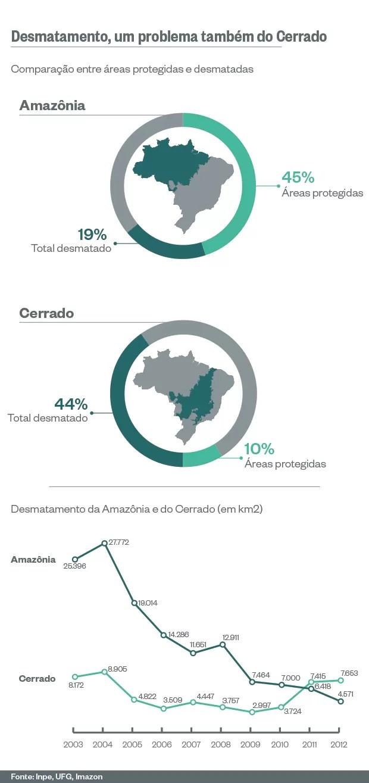 Desmatamento no Cerrado (Foto: Giovana Tarakdjian/ÉPOCA)
