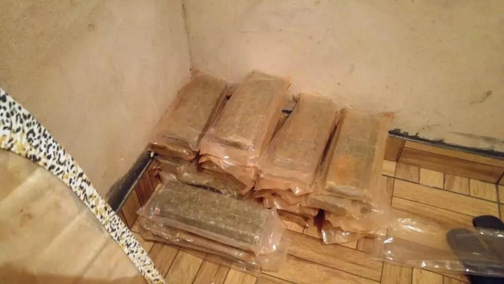 Drogas foram apreendidas durante cumprimento dos mandados nesta manhã (14) (Foto: Polícia Federal/Divulgação)