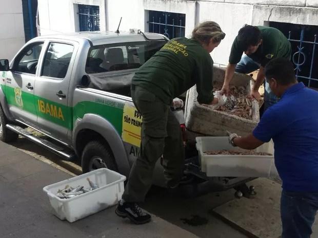 Toda a carga apreendida foi doada ao Lar São Domingos (Foto: Heliana Gonçalves/TV Gazeta)