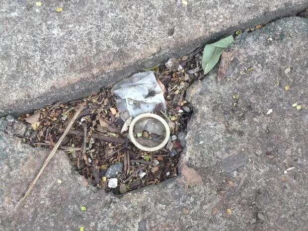 Visitantes relataram ter visto preservativos em área de piquenique do Parque Botafogo Goiás Goiânia (Foto: Vanessa Martins/G1)