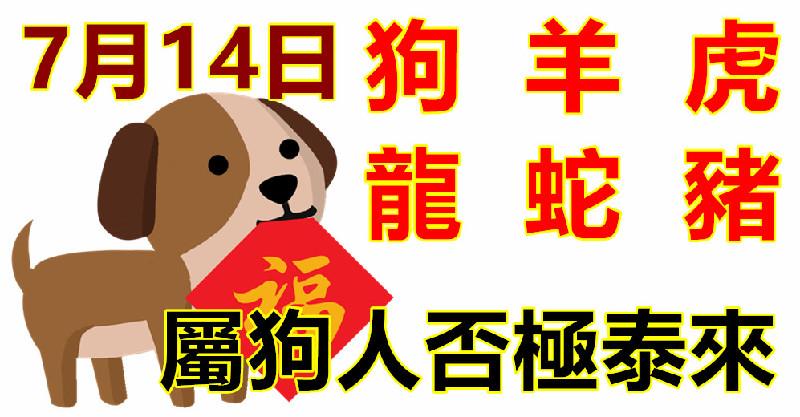 7月14日生肖運勢_狗,羊,虎大吉-haoyunmyt.com - 好運加油贊