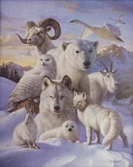 Totem Animals